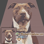 Pit Bull SC Throw Blanket Crochet Pattern