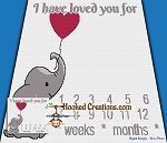 I Have Loved You For ... Baby Milestone SC (Single Crochet) Throw Blanket Graphghan Crochet Pattern - PDF Download