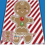 I'm a Cookie C2C (Corner to Corner) Throw Blanket Graphghan Crochet Pattern - PDF Download